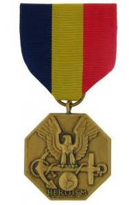 Navy and Marine Corps Medal Full size military medal