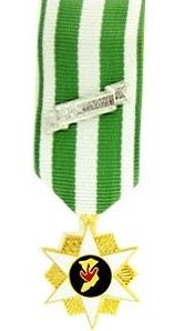 Vietnam Campaign Miniature Military Medal