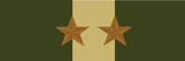 Marine Corps Drill Instructor Military Ribbon with 2 Bronze Stars